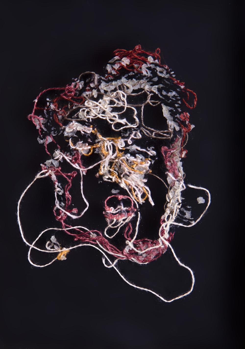 Tía Cuca A flor de piel, 14. 10x15 cm. Fotografía, hilo y piel. 2013