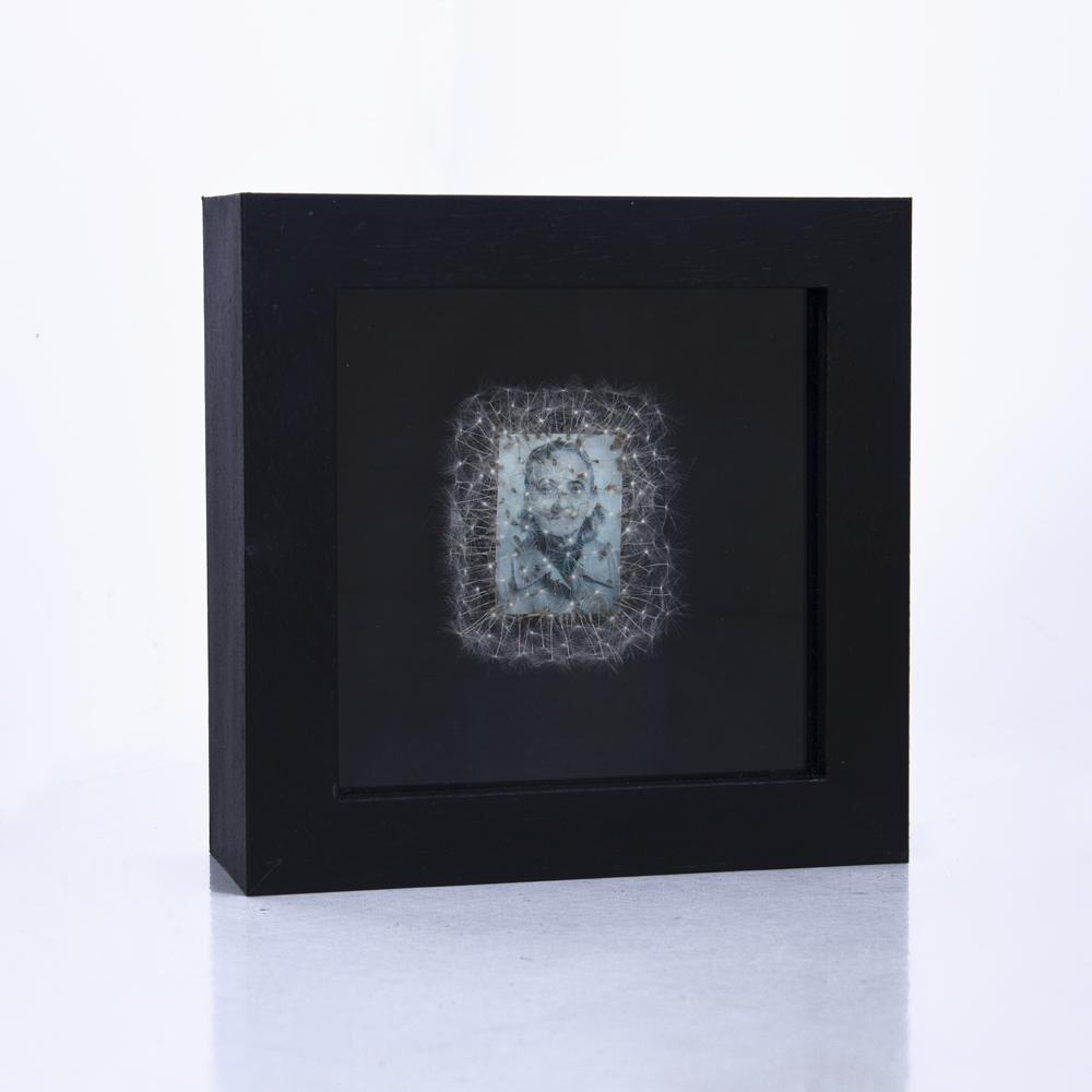 Déjame volar, 03. Vitrina de 15 x 15 cm. Semillas de dientes de león y fotografía. 2013